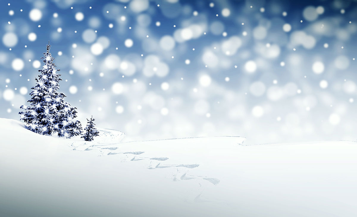 How to Nourish Your Body During Winter Time